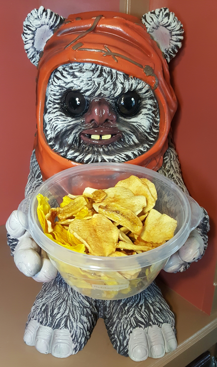 Fruit Chips: Let the Deliciousness Flow ThroughYou!