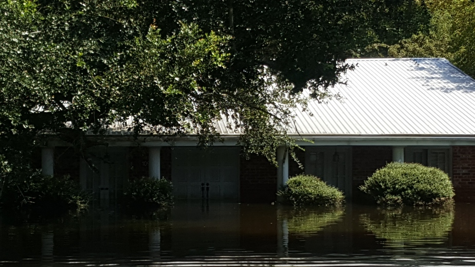 The Homestead Endures, but Louisiana Will Never be the Same.